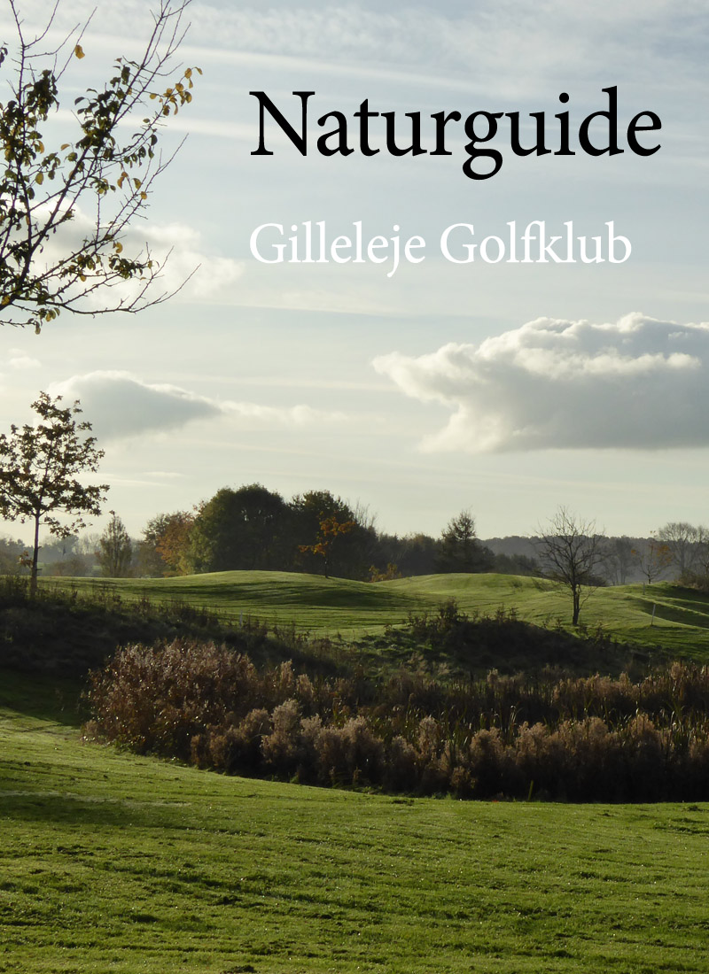 Naturguide Gilleleje Golfklub