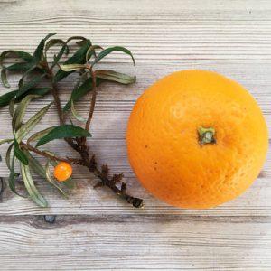 Havtorn og appelsin er fyldt med C-vitaminer