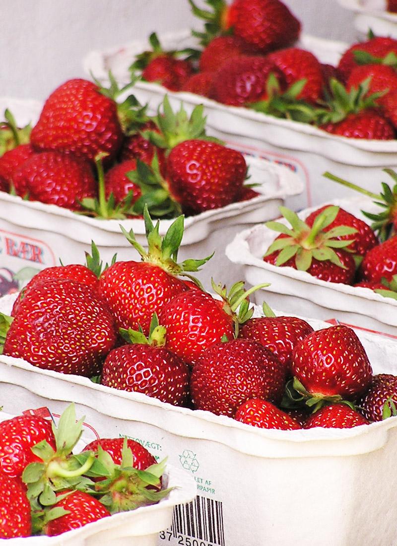 Jordbær I Bakker - Lige Til Marmelade