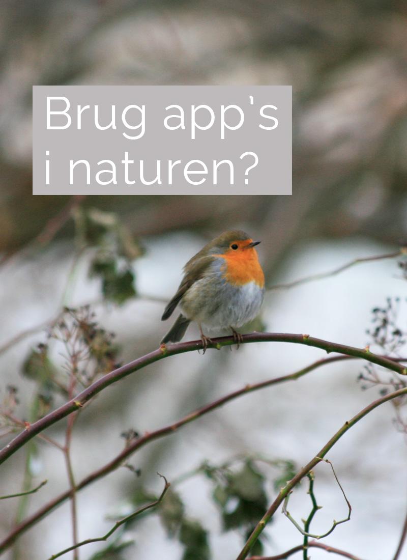 Brug App I Naturen?
